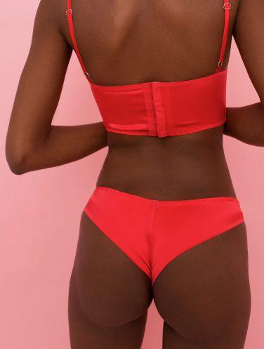 silk brazilian panties